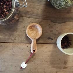 Cuillère à épices - Chêne